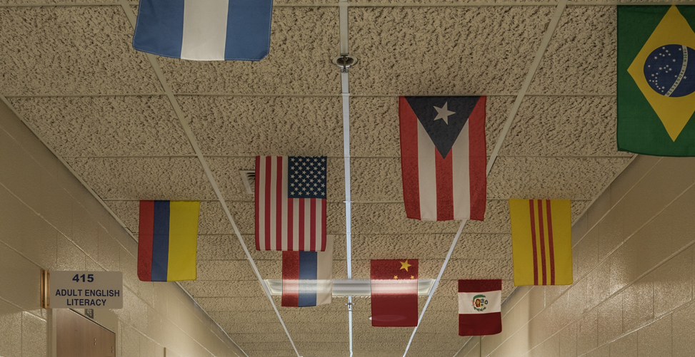 Image of a number of flags.